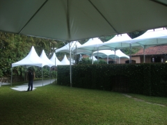Gold tendas - foto 10
