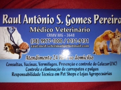 Atendimento veterinário 24 hs e no domicílio