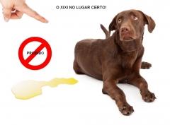 Aqui pode! aqui nÃo pode! http://pet-eshop.blogspot.com.br/2011/11/o-xixi-no-lugar-certo.html
