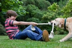O que podemos fazer para melhorar a qualidade de vida de nossos cães!  http://pet-eshop.blogspot.com.br/2015/06/enriquecimento-ambiental-de-caes.html