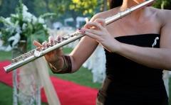 Maggiore musicale produ��es e eventos musicais - foto 10