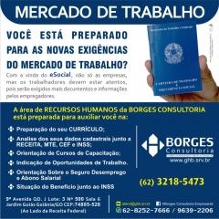 Borges consultoria - foto 15