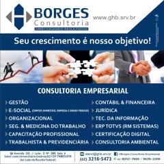Borges consultoria - foto 18