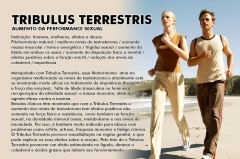 Tribulus terrestris para ereção- natuforce