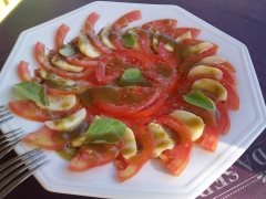 Salada caprese ao molho pesto. tomates frescos ou tomates secos.