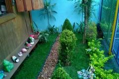 Novo jardim!