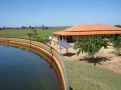 Fazenda ajuricaba município de aruanã - go