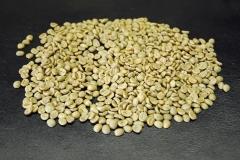 Café verde no processo de classificação de qualidade