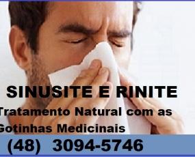 Gotinhas de Jaragua do Sul para Sinusite e Rinite Representante em Florianópolis