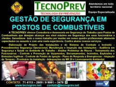 Tecnoprev - consultoria em segurança do trabalho e meio ambiente - foto 28