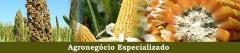 Agronegócio Especializado