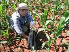 AGROCULTURAS - FOTOS
