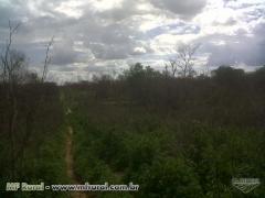 Fazenda com georreferenciamento e ccir em morro cabeça no tempo - pi com 1500 hectares (cód. 64920)