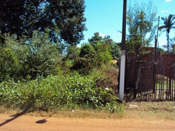 Nossos Produtos para o suco de Guaran� da Amaz�nia