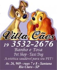 Villa caes - foto 17