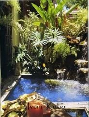 Paisagismo -  jardim tropical
