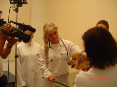 Dra. michelle gandra, veterinária, em entrevista falando sobre saúde