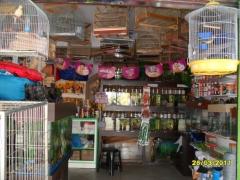 Pet shop aquários  - foto 9
