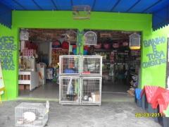 Pet shop aquários  - foto 3