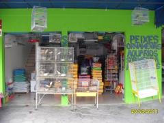 Pet shop aquários  - foto 2